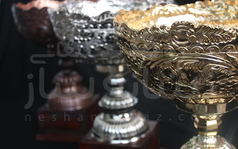 کاپ قهرمانی لیگ برتر شنا